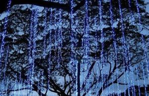 LED Net Waterfall LED Christmas Light Market Decoration pictures & photos