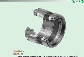High Temperature Mechanical Seal for Big Diameter (HQ604/606/609)