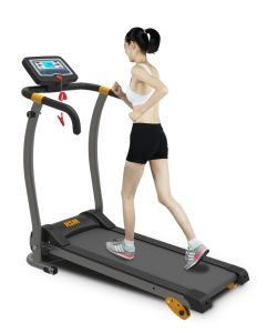 Healthmate Home Fitness Running Machine Electric Treadmill pictures & photos