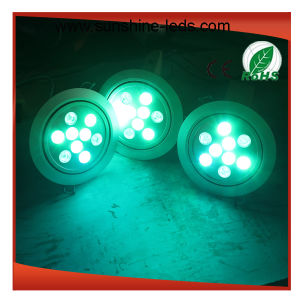 Red/Blue/Green/Yellow/White Color for LED Downlight pictures & photos