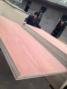 3.6mm Bintangor Face Poplar Back One Time Hot Press Commercial Plywood pictures & photos
