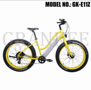 "26""* 4.0 Fat Tire Ebike Snow Electric Bike pictures & photos"