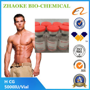 Red Tops Injectable Human Chorionic Gonadotropin 5000iu H-C-G Steroid Hormone pictures & photos