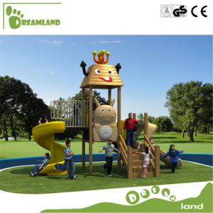Children Outdoor Playground for Sale pictures & photos