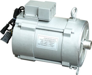 Battery Power Traction Motor for Golf Cart and Touri (HPQ3-4)