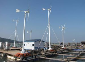 Hybro Wind Frying Generator, 2kw Wind Power, 2kw Wind Turbine 12V 24V 48V pictures & photos