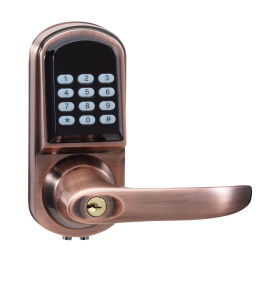 Remote Controller Small Electronic Lock Plated Zinc Alloy pictures & photos