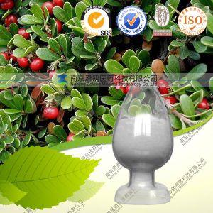 Manufacturer Supply Pure Alpha Arbutin pictures & photos