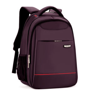 Backpack for Computer and Laptop pictures & photos