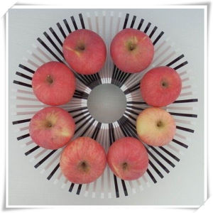 DIY Fruit Decoration Plastic Plate for Food (VK14004) pictures & photos