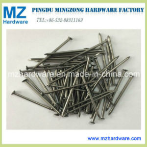Common Nail/Common Iron Nail/Common Wire Nail/Round Wire Nail pictures & photos