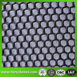 HDPE Hexagonal Plastic Mesh Sheet pictures & photos