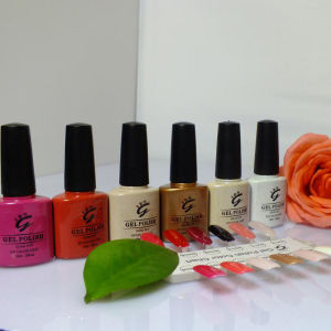 Long Lasting Non-Toxit Bright Nail Polish Gel Polish pictures & photos
