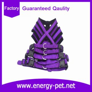Micro Fleece Padded Vest Pet Dog Harness Pet Products pictures & photos