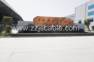ASTM A475 Galvanzed Steel Wire pictures & photos