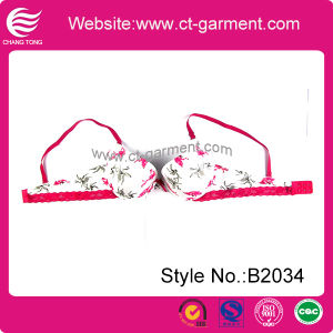 Hot Lace New Design Fashion Bra Stock (B2034) pictures & photos