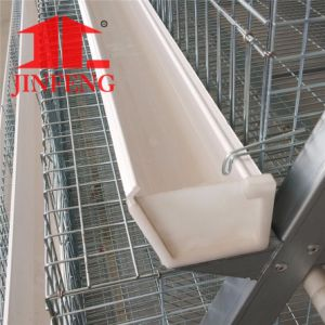 Jinfeng a Type Poultry Layer Chicken Cage with Full Automatic System pictures & photos