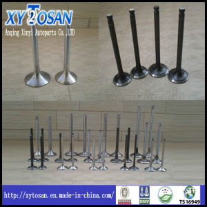 Engine Valve Used for Mit 6dB 30004-23101 pictures & photos