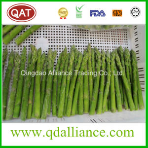 Quick Frozen Whole Green Asparagus pictures & photos