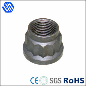 Carbon Steel High Quality Zinc Plated 12 Point Nut pictures & photos