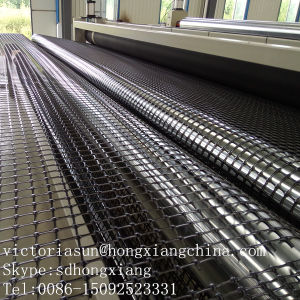Biaxial Geogrid pictures & photos