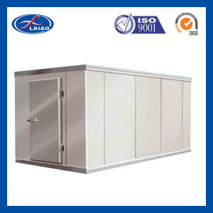 Mini Cold Storage Room for Beef Steak pictures & photos