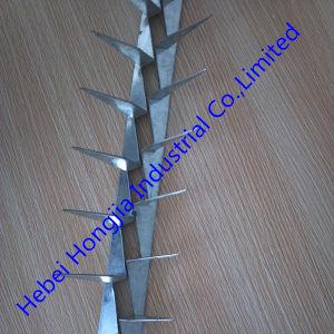 Galvanized Steel Wall Spike/Bird Spike for Walls (supplier)