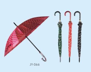 Auto Open Colorful EVA&PVC Straight Umbrella (JY-065) pictures & photos