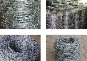 Best Quality and Price Barbed Wire (Single Twist, Double Twist) pictures & photos