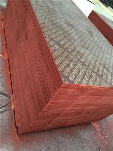 Premium 18mm Phenolic Glue Brown Film Faced Marine Plywood pictures & photos