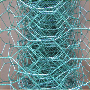 PVC Coated Hexagonal Wire Netting Hex Chain Link Fence pictures & photos