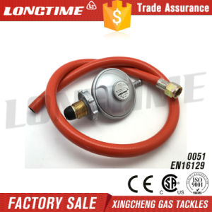 Factory Wholesale LPG Gas Pressure Regulator Hose Assembly