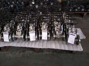 A105 Forged Steel Bellows Seal Globe Valve pictures & photos