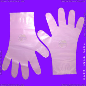 Disposable Household PE Gloves pictures & photos