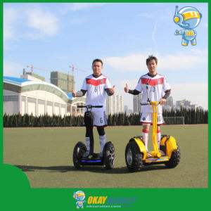 Okayrobot Electric Scooter off Road, Electric Powered Offroad Scooter, CE Mark