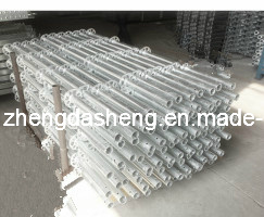Zds HDG Ringlock Scaffolding/Construction Equipment/ Ringlock Scaffolding pictures & photos