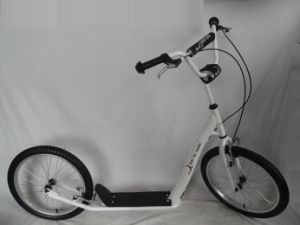 "20"" Steel Frame Kick Scooter (H2020) pictures & photos"