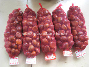 New Crop Chinese Fresh Chestnuts pictures & photos