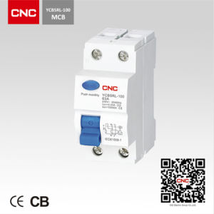 Hot Product Residual Current Circuit Breaker (YCB5RL) pictures & photos