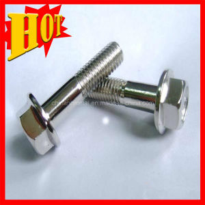 Customed Titanium Gr9 Bolts for Wholesale pictures & photos