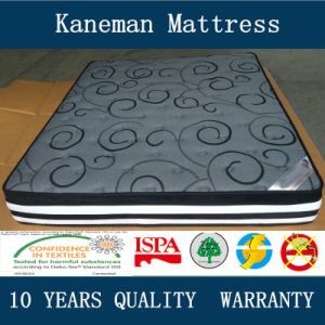 Euro Top Compress Wholesale Export Mattress pictures & photos