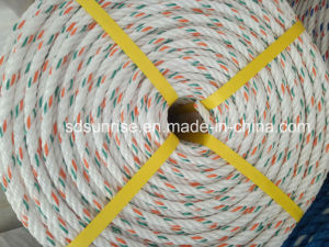PP Danline Rope White with Green and Red pictures & photos