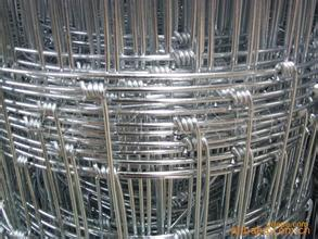 Field Fence Mesh/PVC Coated Welded Wire Mesh Fence/Galvanized Wire Mesh Fence pictures & photos