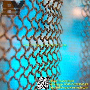 Fashionable Curtain Ring Metal Mesh pictures & photos