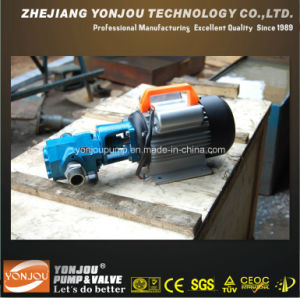 Oil Transfer Portable Gear Oil Pump with Japanese Design pictures & photos