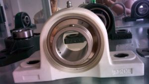 The Stainless Bearing with Thermoplastic Ones pictures & photos