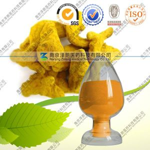 Manufacturer Turmeric Curcumin 95% Price Curcumin pictures & photos