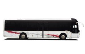 Company Shuttle Bus 59+1 Seats, 13m