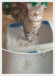 Clumping Litter pictures & photos