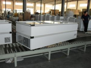 2.5m Jumbo Glass Door Freezer (SD/SC-980) pictures & photos